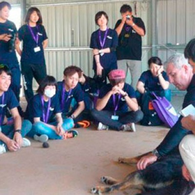 Canine Aquatic Centre Japanese Student Visits